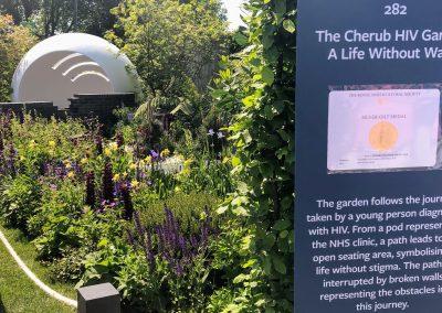 CHERUB HIV RHS Chelsea Garden